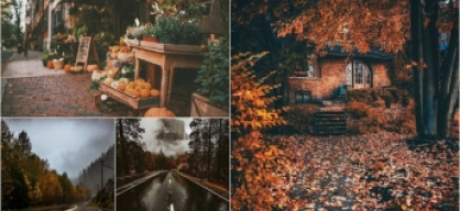 autumn inspiration
