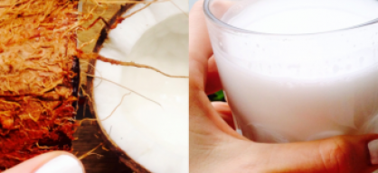 DIY: homemade coconut milk